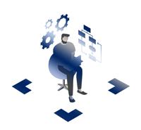 Type of Partner System Integrators